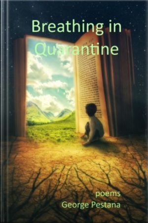 Breathing In Quarantine ebook